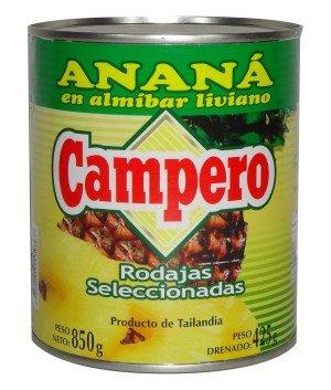 Anana Campero-01